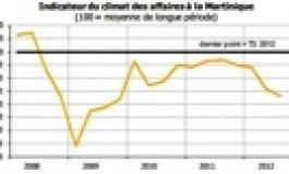 """Tout va """"bien"""" en Martinique"""