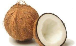 La coco ou le coco ? Qui a raison ?