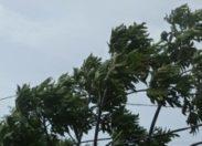 La tempête tropicale #Chantal : les premières photos