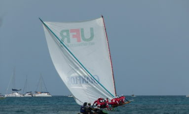 #TDY2013 : UFR/Chanflor Champion