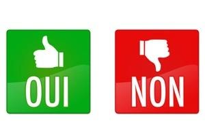 """La phrase de l'année 2014 : """" Oui j'ai dit non à #Letchimy"""""""