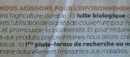 Et si les producteurs de bananes nous prenaient pour des cons en #Martinique et en #Guadeloupe