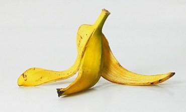 #Epandage et Pau de banane !!