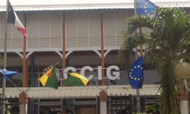 En #Guyane la #CCIG affiche le drapeau guyanais...en #Martinique...LOL