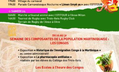 «  Historique  de l'immigration Congo à la Martinique »