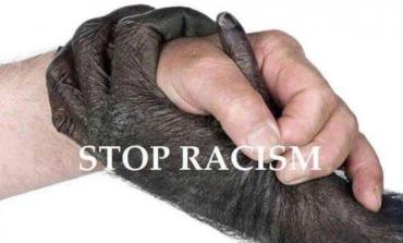 Image du jour (28/04/15) #racisme #racism #stopracism