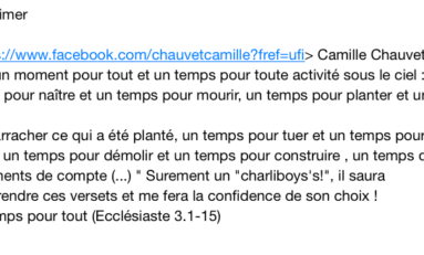 Camille #Chauvet invente les menaces du colimaçon