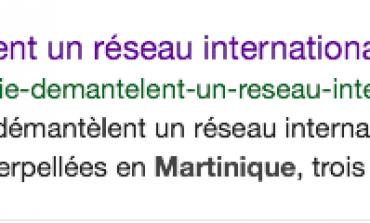 """""""Les journalistes de Martinique 1ère sont-ils des incompétents, ou des eunuques ? Ou un métissage des deux ?..."""""""