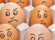 Comment tuer le poussin dans l'œuf au cœur d'une magouille qui ne manque pas d'ingénierie