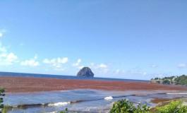 La Mer Incurie Beach revient plus tôt que prévu en Martinique