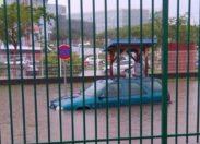 La Martinique en apnée ...les premières images mouillées