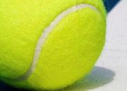 Coupe Davis de tennis : la Guadeloupe recevra bien France -Canada