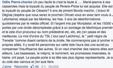 Lettre ouverte à Odile Pierre-Charles