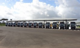 L'image du jour [29/12/15] Martinique