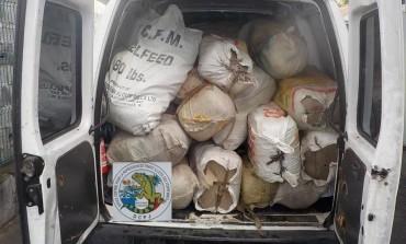 Importante saisie d'herbe de cannabis transportée par une embarcation rapide au large de la Guadeloupe