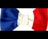 Français de La Réunion, Guadeloupe, Martinique, Guyane, Mayotte…à quoi sert un secrétariat d'état à l'égalité réelle?