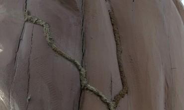 Reviens Patrick...les termites aiment tes totems