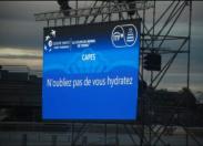 Coupe du monde de pénis en Guadeloupe