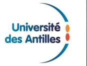 CORINNE MENCÉ-CASTER MET FIN À SON MANDAT  DE PRÉSIDENTE DE L'UNIVERSITÉ DES ANTILLES
