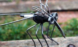 Zika : La Floride lâche des moustiques modifiés génétiquement... WTF...
