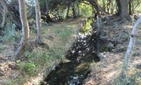 L'Eperon : Balade autour de la ravine Saint-Gilles - Journées Européennes du Patrimoine à la Réunion