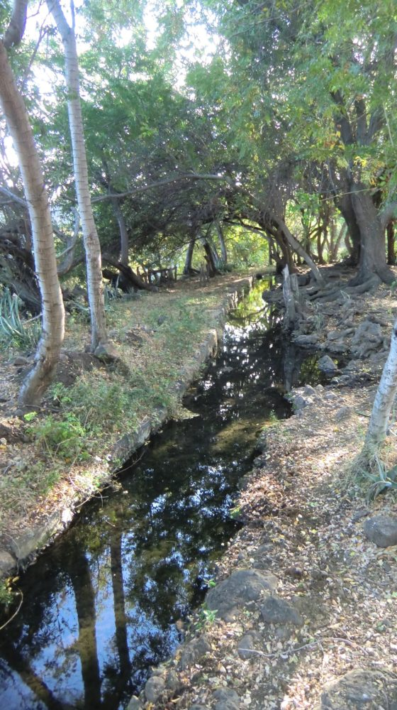 L'Eperon : Balade autour de la ravine Saint-Gilles – Journées Européennes du Patrimoine à la Réunion