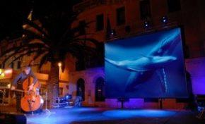 Entrepôt Kervéguen (Maison des TAAF) : Baleine et contrebasse - Journées Européennes du Patrimoine à la Réunion