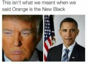 Orange is the new black ?