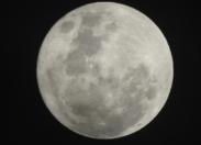 L'image du jour [15/11/16] Super Lune - Super Moon