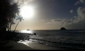 L'image du jour [29/12/16] Martinique