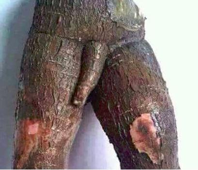sexe sensuel sexe Martinique