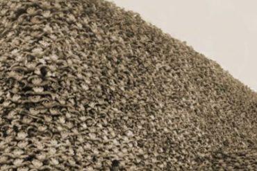 L'histoire cachée du monde : les bisons
