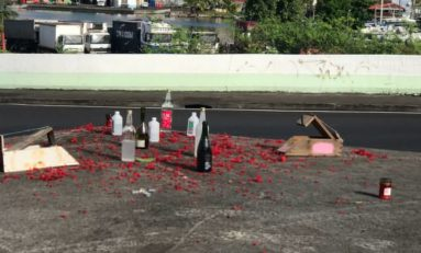 Quand le quimbois investit dans les ratières en Martinique