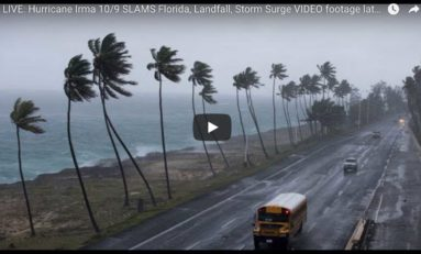 Suivez Irma en Floride en live vidéo