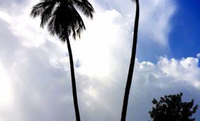 L'image du jour 29/12/17 Martinique - Le Rocher du Diamant