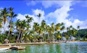 L'image du jour 06/01/18 Saint Lucia - Marigot Bay