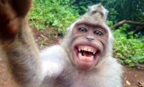 Voici ce qui se passe quand vous postez un selfie sur Facebook...