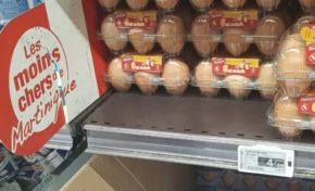 Bernard Hayot invente la🐔 poule aux🐣 oeufs d'or🐓...coco rico...mucho dinero🛒💶💶💰 !!!