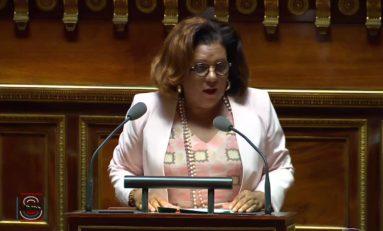 Remaniement en France: et si Catherine Conconne devenait Ministre ? Et si Macron s'y mettait ?