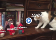 """L'année 2018 d'Emmanuel """"Manu"""" Macron 😂"""