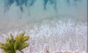 L'image du jour 19/01/19 - Martinique- Plage des salines