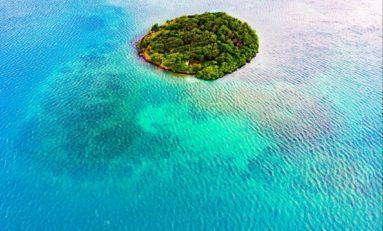 L'image du jour 30/01/19 - Martinique