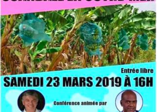 Chlordécone en Martinique:  Serge Letchimy...l'énième escroquerie intellectuelle