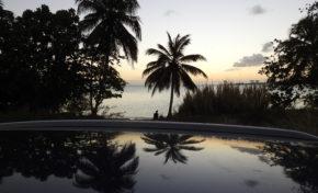 L'image du jour - 31/03/19 - Martinique