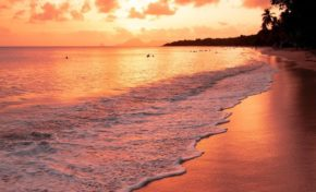 L'image du jour 28/08/19 - Plage des salines - Martinique